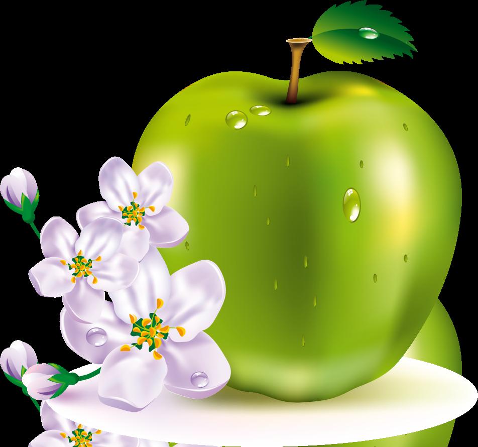 Moi aussi j'veux des pommes ;D [4/4 - À noter !] 887130pommevertefleursdepommier