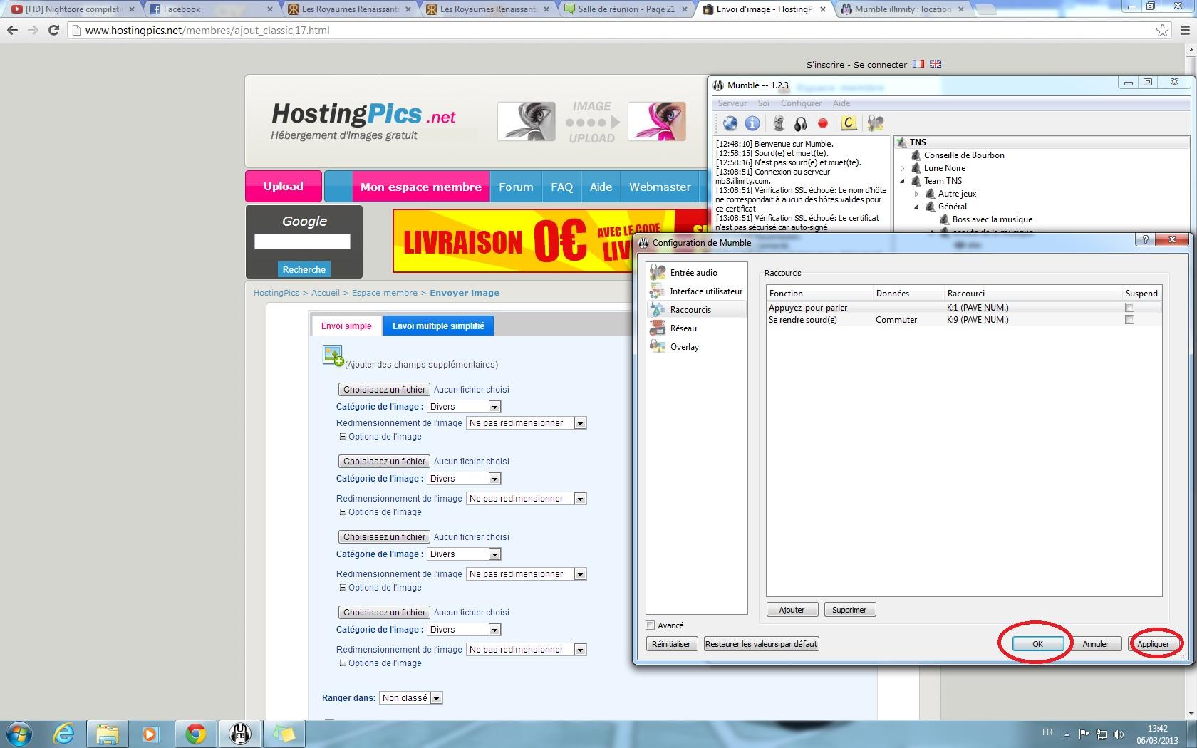 Installer et configurer mumble 894780installationM11