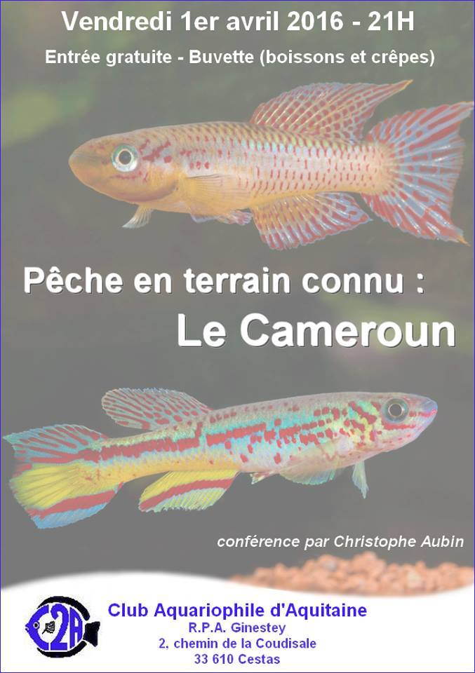 Conférence pêche Cameroun C2A 895868conf