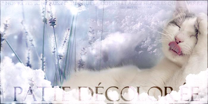 F.C.L. Atelier ~  [ Fleury [ABSENTE]  Chaty [PRÉSENTE] Luny [PRÉSENTE]] 899310PatteDcolore3