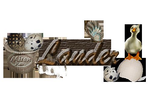 Nombres con L 8999561Lander