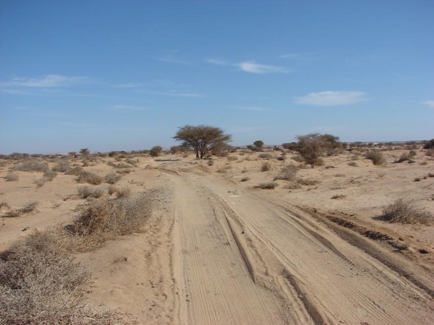 Le Grand Sud du Maroc - II 901961055
