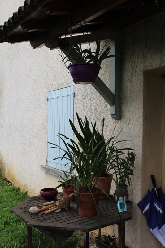 Sortie au jardin 2016 - Page 3 902799IMG8463