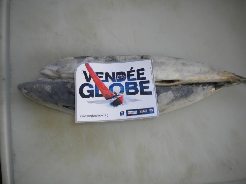 Le Vendée Globe au jour le jour par Baboune - Page 6 902855DSCN4786