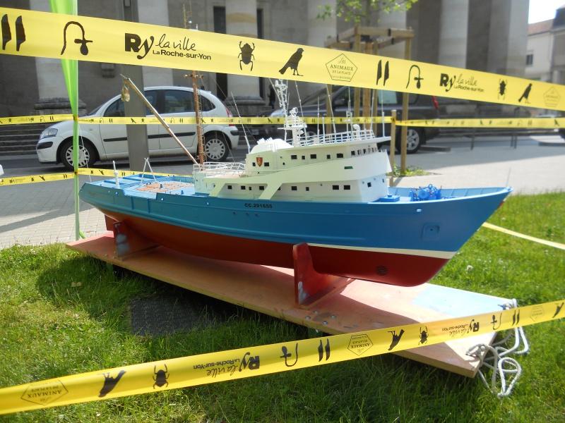 démo de maquettes navigantes sur la place Napoléon à la Roche S/Yon le 31 Mai et le 1er Juin 915310DSCN4046