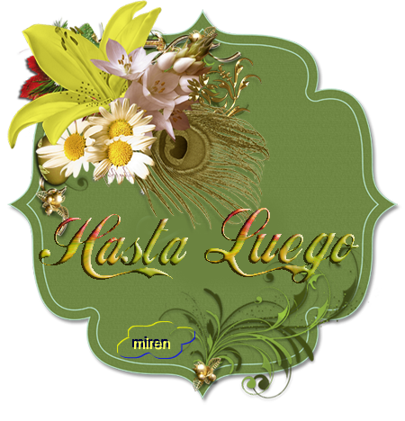 Flores  916230Hastaluego