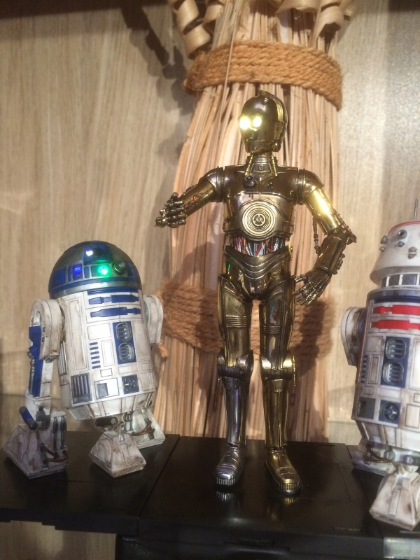 C-3PO de Bandai  918699IMG0250