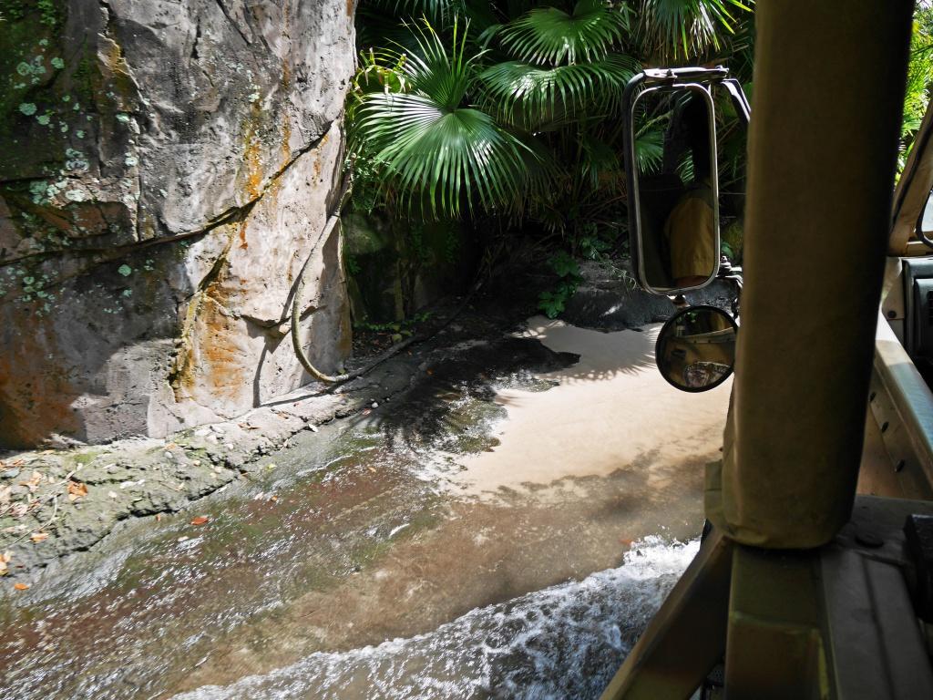 Une lune de miel à Orlando, septembre/octobre 2015 [WDW - Universal Resort - Seaworld Resort] - Page 6 922099P1030230
