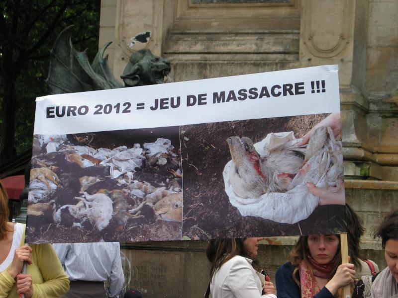 11 - Manifestation contre le massacre des animaux en Ukraine - 9 juin 2012 925174IMG9223