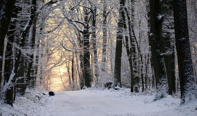 Winter is coming... 930938eee