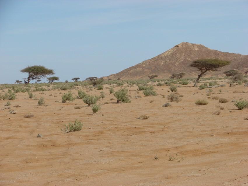 Le Grand Sud du Maroc - II 933887051