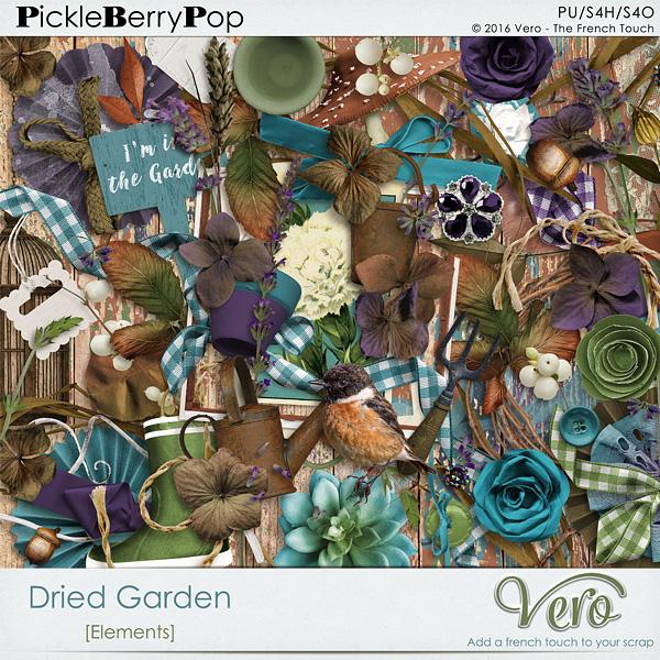 Véro - MAJ 02/03/17 - Spring has sprung ...  - $1 per pack  - Page 10 935913Verodriedgardenelpv