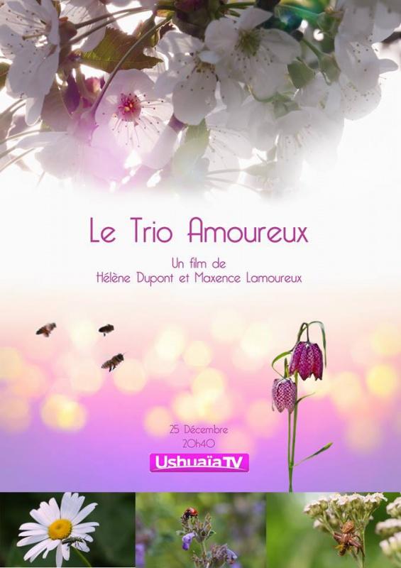 """documentaire télévisé Spipoll : """"Le Trio Amoureux"""" 94035424232530101551256152132975005518902155125888n"""