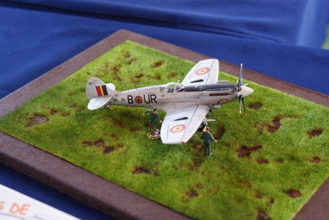Expo maquette de Chatenois les Forges 2013 942456DSC04164