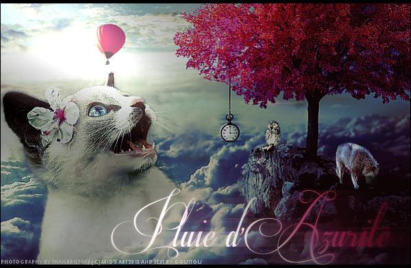 Again and again and again and ag.. Coffee [Annulé] 945860alcoolique