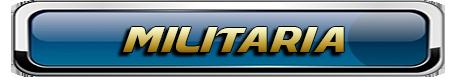COLLECTIONNEURS DE LA MAYENNE, DE FRANCE ET D'AILLEURS 947919Militaria