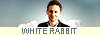 White rabbit 948703LOGO