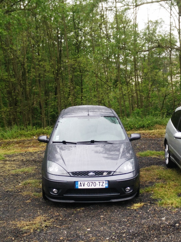 17e Meeting Ford du 1er mai  949553IMG20160501151730