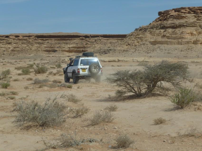 Le Grand Sud du Maroc - II 953022044