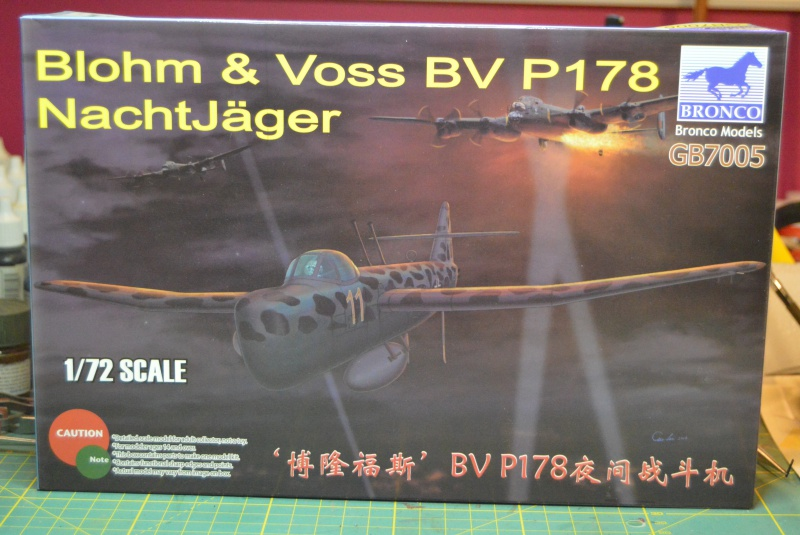 What If? : Bv P178 Remplacent du Ju87 Stuka 955524OK2705163