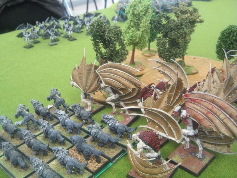 Méga bataille en 3 parties, pour une mini campagne 957714IMG1444