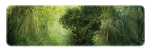 La Forêt des Nymphes