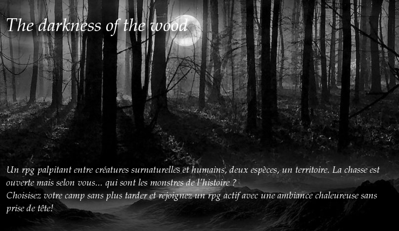 The darkness of the wood