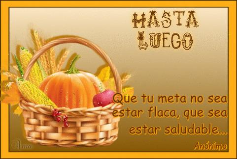 Canasta Saludable con Frase 961449HASTALUEGO