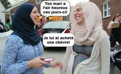 HUMOUR - blagues - Page 5 962324Chvre