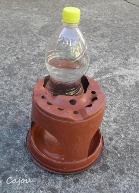 Coupelle d'eau 962440abreuv2