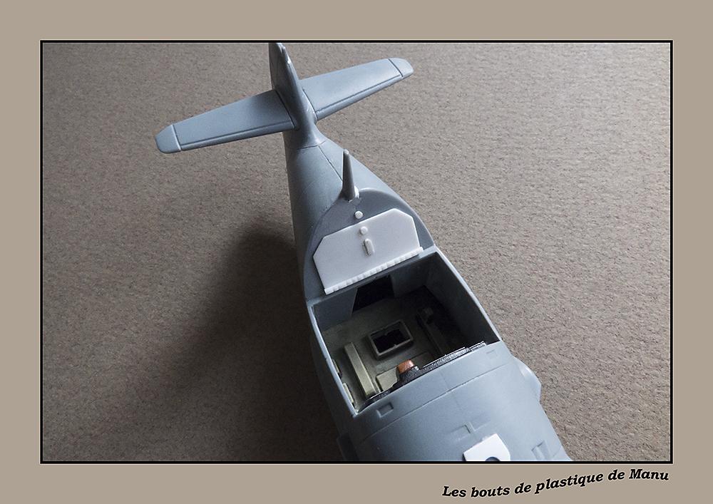 tiger - Bf 109 Tiger Model egg plane-FINI ! 9657636414