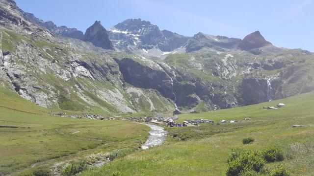 LC8 Rally western Alps - Stella alpina - Alpes Tour 2016  96805920160709112144
