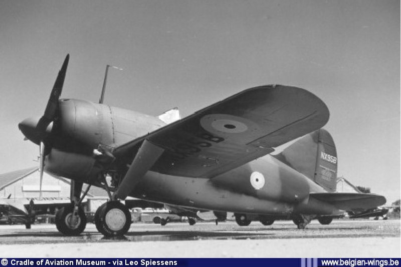 Brewster B-339B Buffalo 1/48 Tamiya.....Terminé! 968274NX95BviaLeoSpiessens