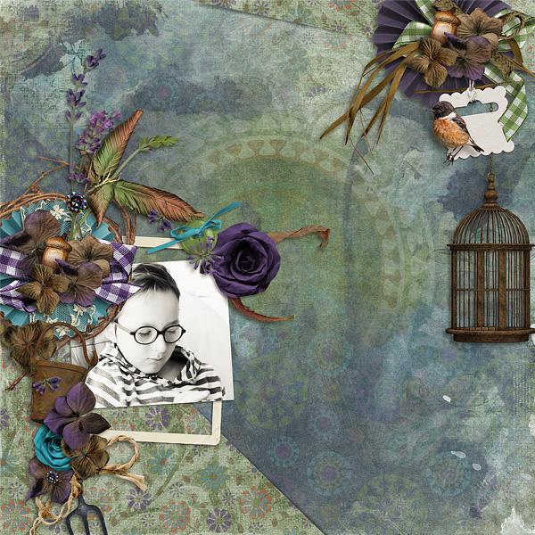 Véro - MAJ 02/03/17 - Spring has sprung ...  - $1 per pack  - Page 10 969717HSAHarvestsunset1Bx600