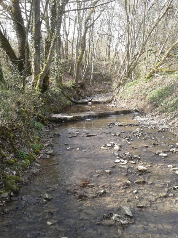 Spot près de Sarreguemines 97476920150413163918