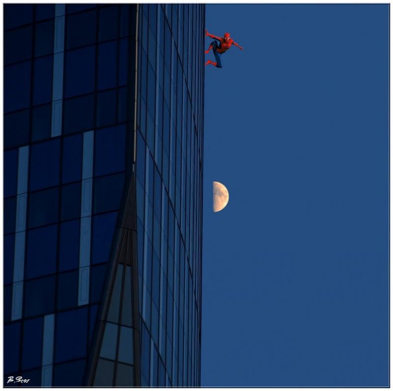 La photo de nuit, cela donne des idées ...  974896DSC0178spider