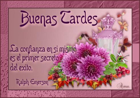 Flores con Frase 976598tardes
