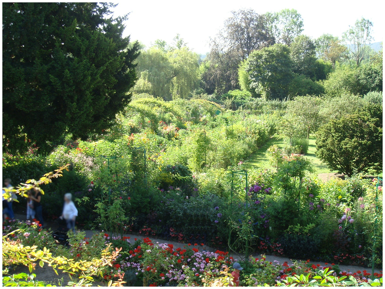 """GIVERNY"" chez Claude MONET 979710DSC010853"