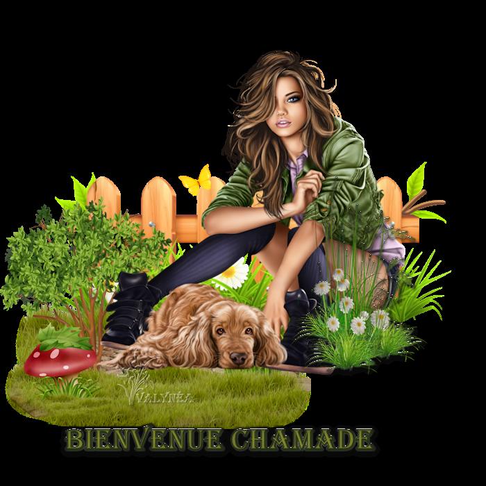 Bienvenue à toi Chamade 983367chamade