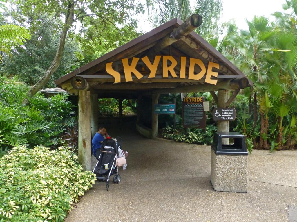 Une lune de miel à Orlando, septembre/octobre 2015 [WDW - Universal Resort - Seaworld Resort] - Page 11 986925P1180256