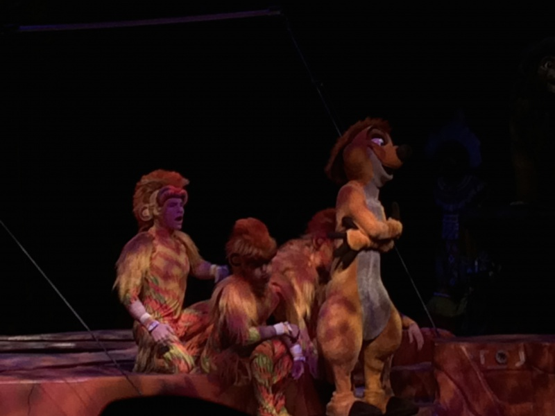 Walt Disney World + Universal Studios + Sea World + Busch Gardens Summer 2014 - Page 4 988068IMG2765