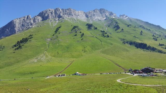 LC8 Rally western Alps - Stella alpina - Alpes Tour 2016  99087720160716102459