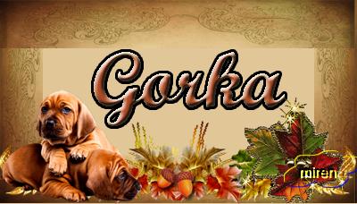 Nombres con la G 9916190gorka