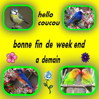 Bon Dimanche 993523538a05dcbb97e0fcc1dff73c2544a4d0