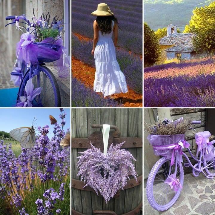 Mes Boutis de Provence  ♥♥♥ 994564999117595553020494798704684832n