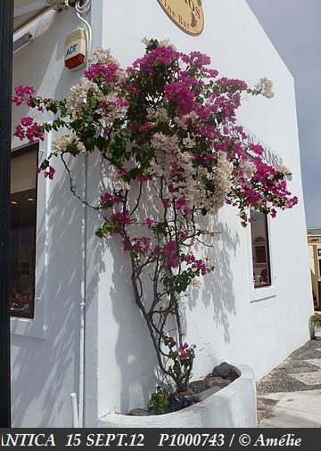 Z06 - COSTA / C/R  Mer Egée et Galilée / Grèce, Crête, Israël, Chypre, Turquie !  13-20/09/2012  997349P1000743