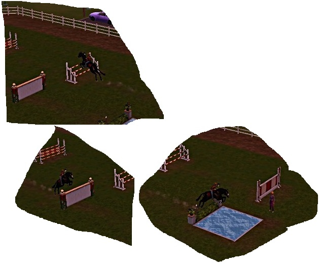 "[Challenge] Teens and Horses ""Sims 3"" - Page 3 997820Entrainement4bis"