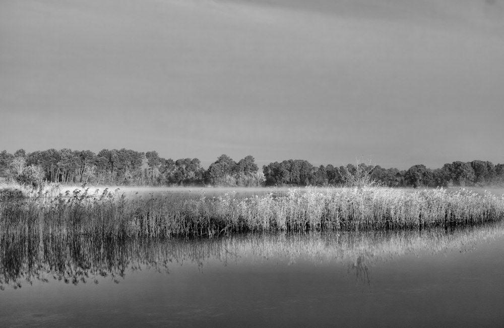 jcr paysage noir et blanc - Page 10 998583passage06