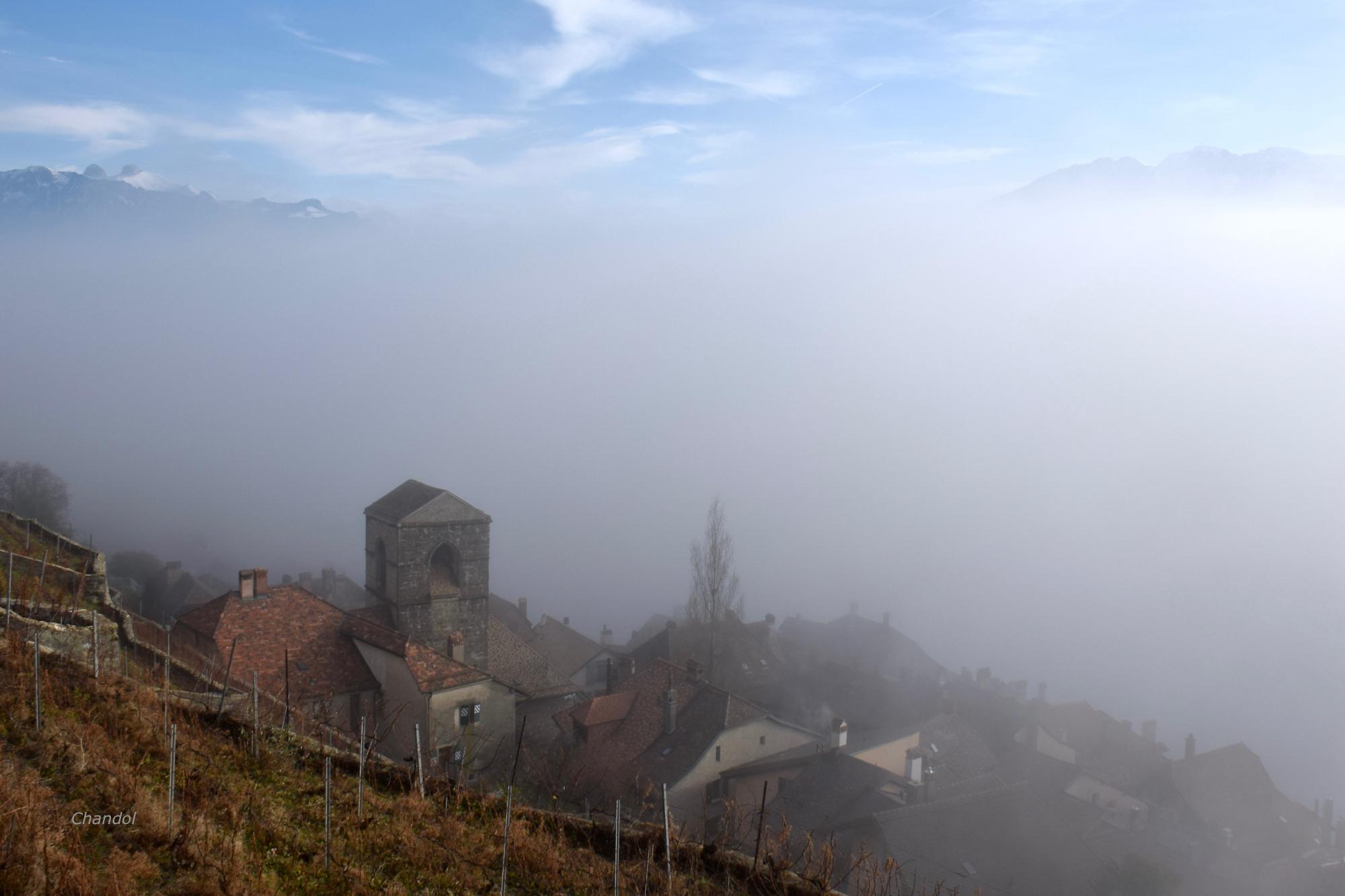 Encore de la brume 999012DSC0114