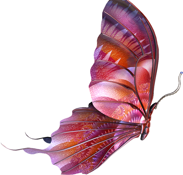 Tubes Papillon 999826Melgibson4d2
